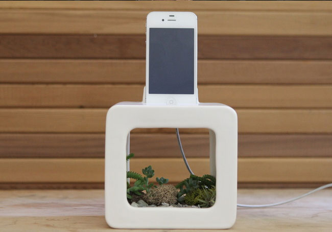 Bloombox Natural Acoustic Amplifying iPhone Dock 01