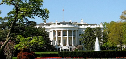 2013 02 25 14h19 25 520x245 Google applauds White House push for public access of federally funded research